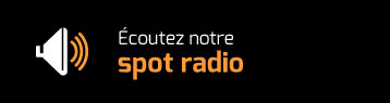 Parkett-theiss-radio-button-FR